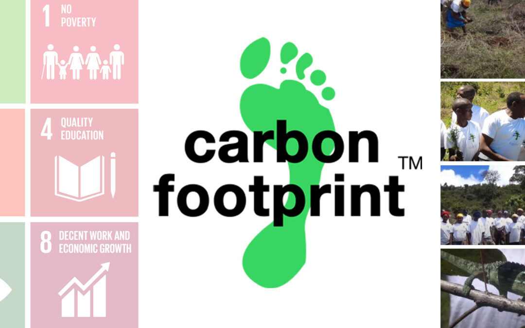 Our carbon footprint matters
